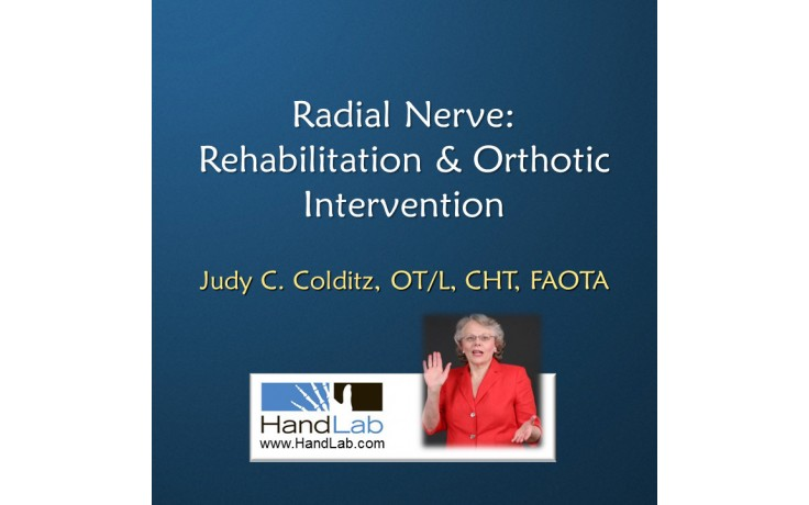 Radial Nerve: Rehabilitation & Orthotic Intervention